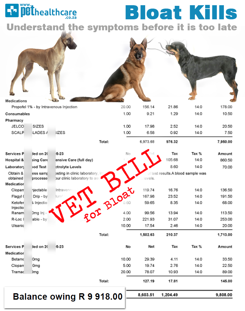 Image Result For Veterinary Pet Insurance