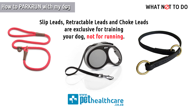 How-To-Parkrun-with-my-dog-PetHealthcare-5-best-gear-to-use-short-lead-harness-dog-stroller-water-bottle short snout aggressive muzzle halti harness grooming muzzle shock collar prong collar choke chain slip leads retractable leads choke leads