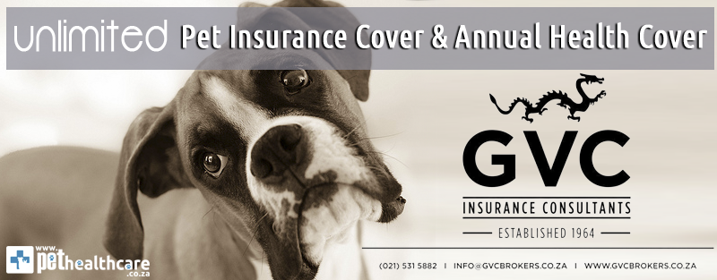 Unlimited Pet Insurance Cover GVC Brokers Pet Healthcare Pet Medical Cover Emergency Pet Cover Accidental Cover