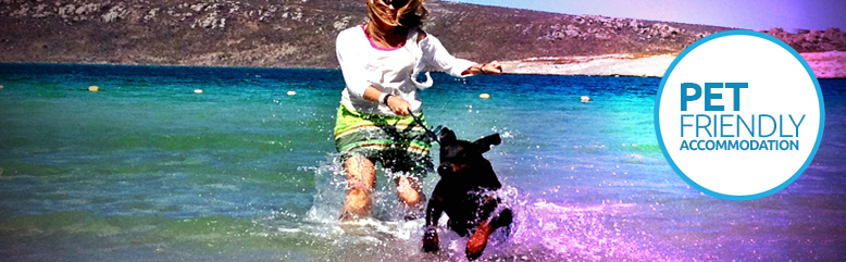 Pet Friendly Holiday Accommodation Pethealthcare Co Za