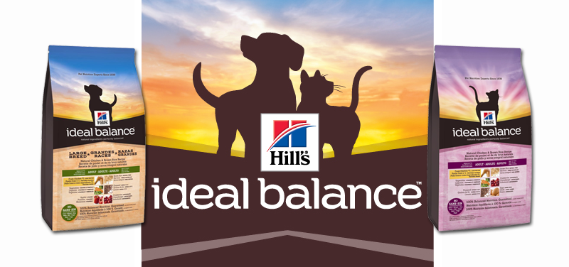 Hills Pet Food Launches A New Product Pethealthcarecozahills