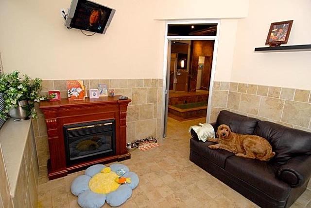 Barkley Pet Hotel   pethealthcare.co.za