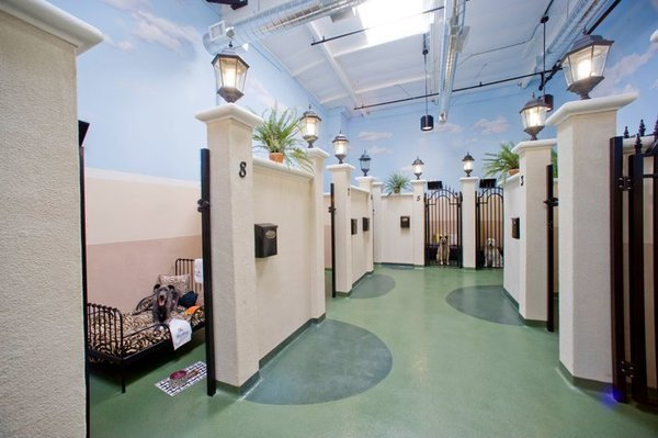 Barkley pet hotel for Pet friendly luxury hotels
