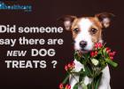 Montego Pet Food, Dog Food, Pet Nutrition, Karoo Wet Food, Gifts for pets, Dog Food Treats, Luxury Pet Treats