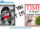 How to Identify Abused Animals