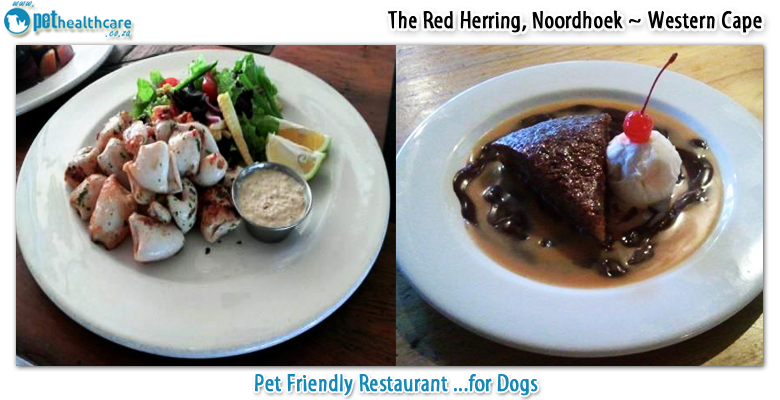 The Red Herring Restaurant Noordhoek South Africa