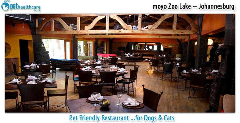 moyo zoo lake pethealthcare co za