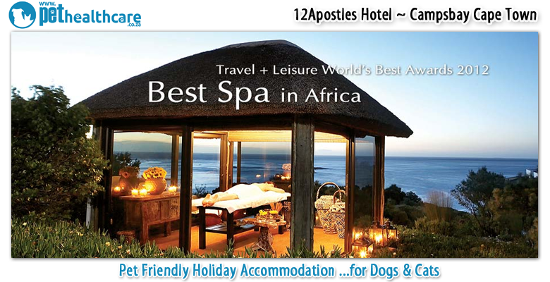 The Twelve Apostles Hotel And Spa Pethealthcare Co Za
