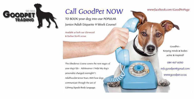 Dog Food Suppliers In Durban