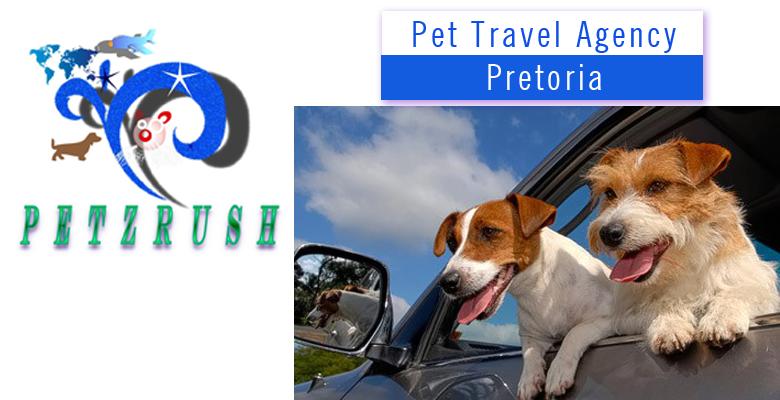 PetzRush Pet travel   pethealthcare co zaPetzRush Pet Travel