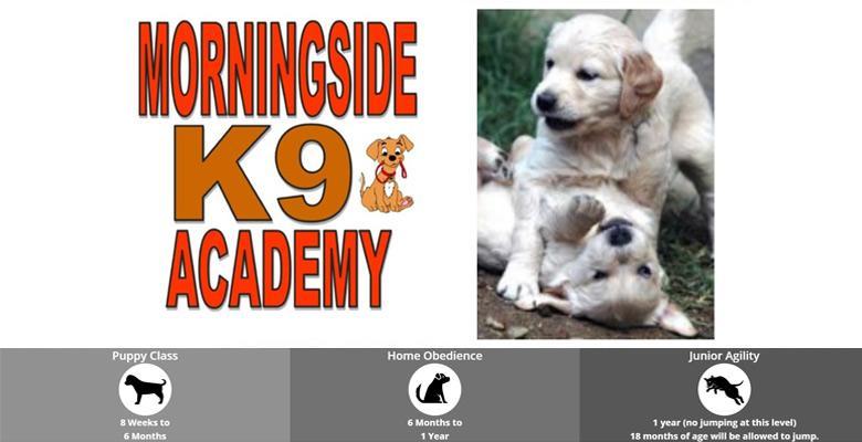 Dog Training Academy Of South Florida