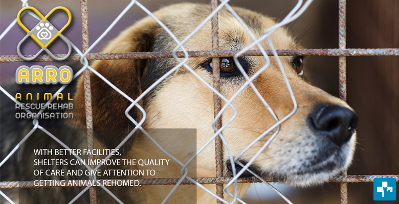 ARRO Animal Shelter Development Project | pethealthcare co