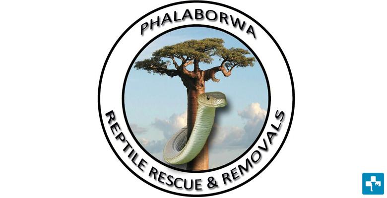Phalaborwa Reptile Rescue and Removals | pethealthcare co zaReptile