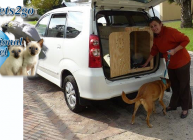 Pets 2 Go International Specialized Pet Travel Service