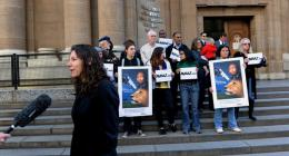 AVAAZ Stop Canned Lion Hunting Jacob Zuma ACSA Primedia shame on South Africa