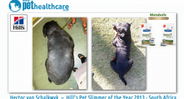 Hill's Pet Slimmer of the year 2013 South Africa Hector van Schalkwyk