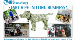Pet Sitting and Dog walking services in South Africa