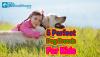 Perfect Dog Breed for Kids, children, Pet Healthcare, Beagle, cavalier king charles, labrador retriever, irish setter, cocker spaniel